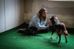 Workshop Hundeschule JDC 27.10.2018-8169