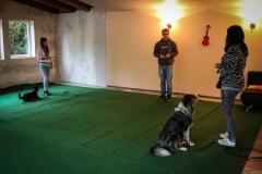 Workshop Hundeschule JDC 27.10.2018-8175