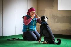 Workshop Hundeschule JDC 27.10.2018-8182